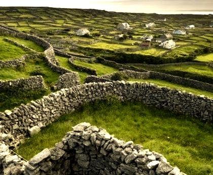 Stone Fence Maze, Ireland