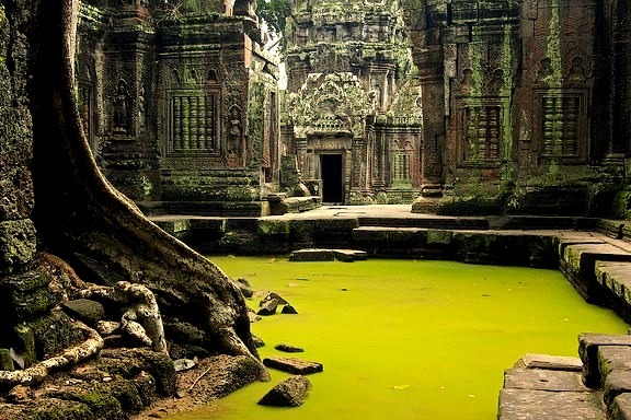 The beauty and mystical ambience of Ta Prohm, Angkor, Cambodia