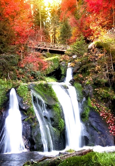 Black Forest Waterfall, Triberg, Germany