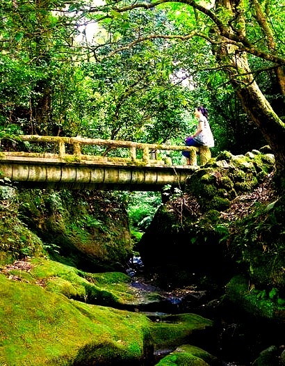 Bridge in Kakusenkei Gorge, Ishikawa Prefecture, Japan
