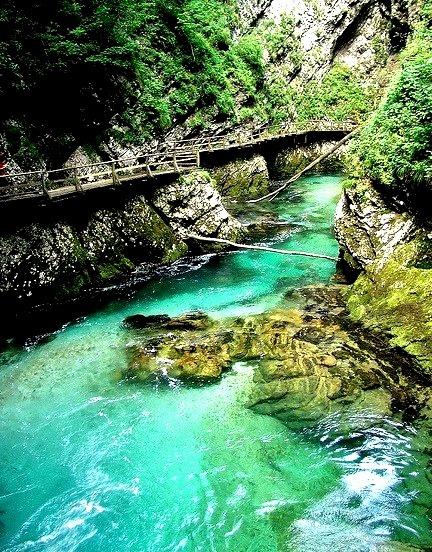 Radovna River flowing through the Vintgar Gorge, Slovenia