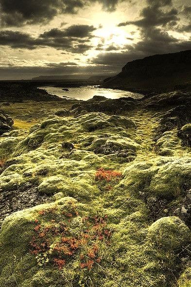 Autumn Colors, Iceland
