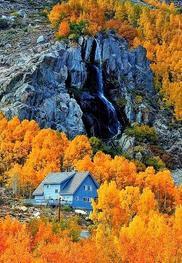 Autumn colors in Eastern Sierras, California, USA