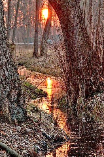 Reflection, Meklinburg, Germany