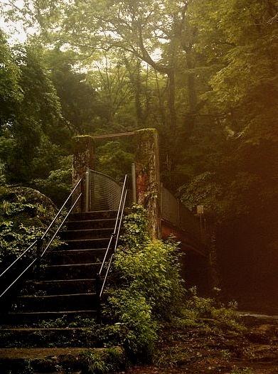 Entrance to the green world, Kikuchi Valley / Japan