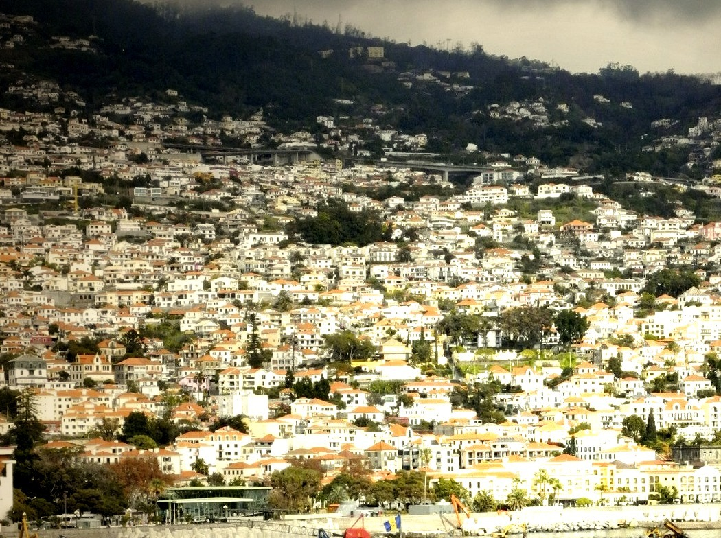 Funchal, Madeira Islands / Portugal